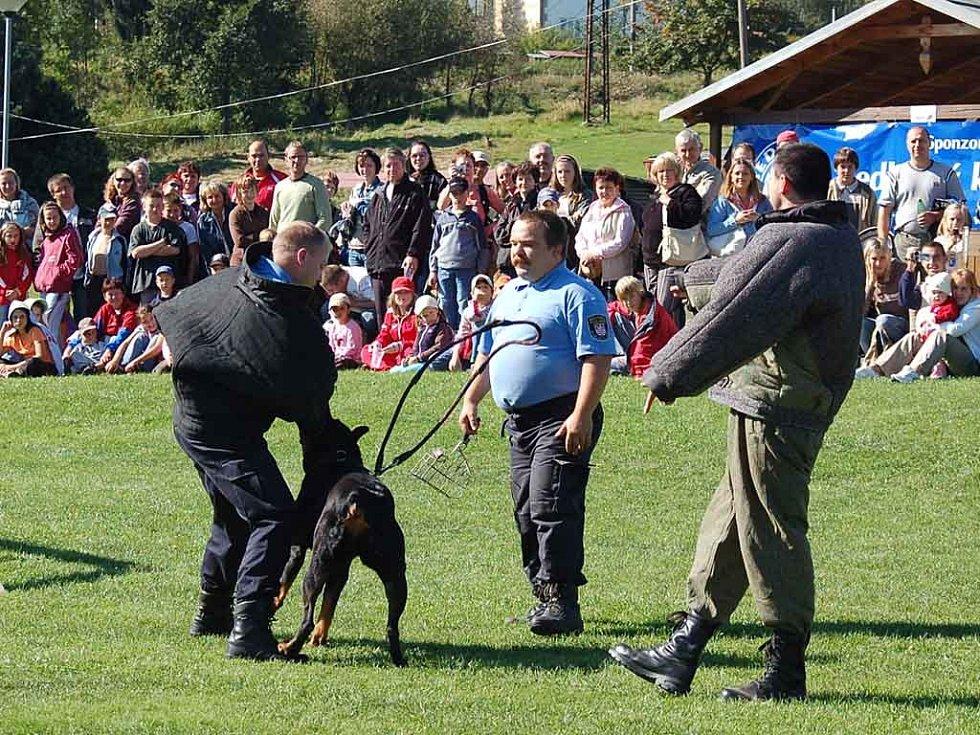 Trhej! Do spárů služebního psa strážníků by se chtěl dostat jen málokdo.