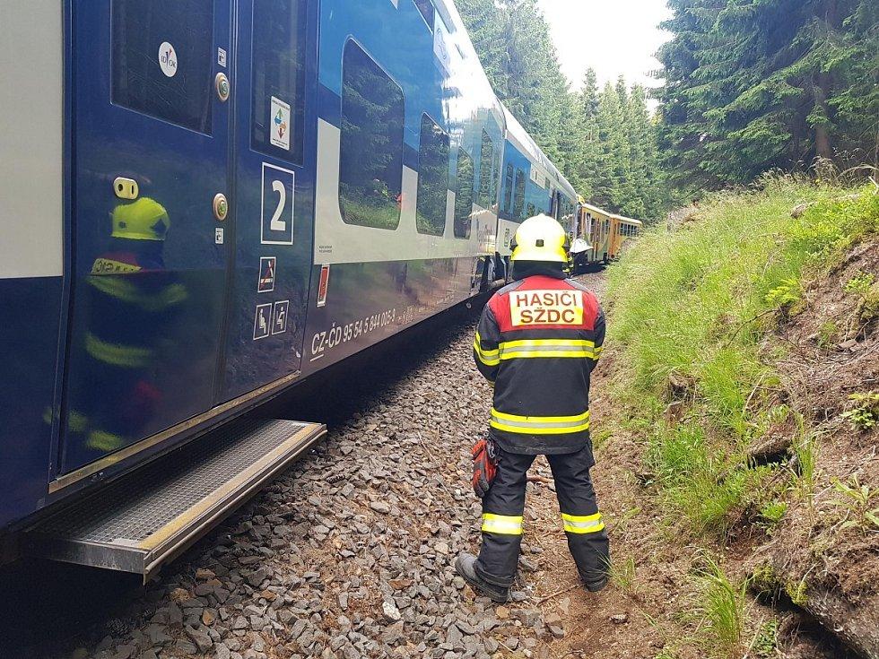 Tragická srážka dvou osobních vlaků u Perninku na Karlovarsku si vyžádala dva lidské životy