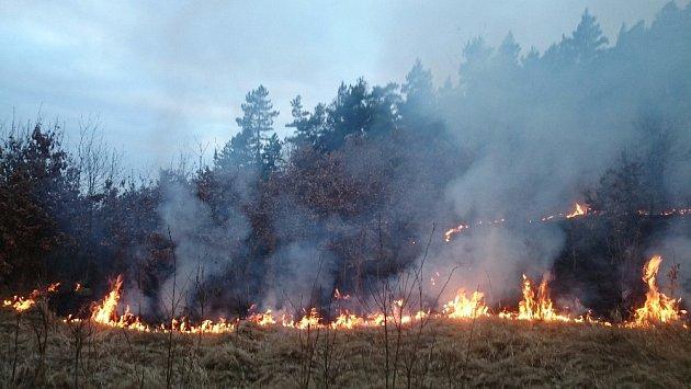 Požáry trávy