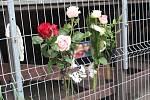 Kamarádi vzpomínají na dvanáctiletou dívku, která v pátek uhořela ve skateparku v Ostrově.