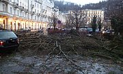 Auta poškozená stromy v Karlových Varech a ve Františkových Lázních.