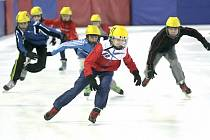 Jednou z devíti disciplín zimní olympiády dětí a mládeže je i rychlobruslení. V tom bývají během těchto her naši sportovci úspěšní. Cenné kovy se čekají i za snowboarding nebo krasobruslení.