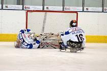 Semifinále: SKV Sharks K. Vary - HC Sparta Praha 6:0