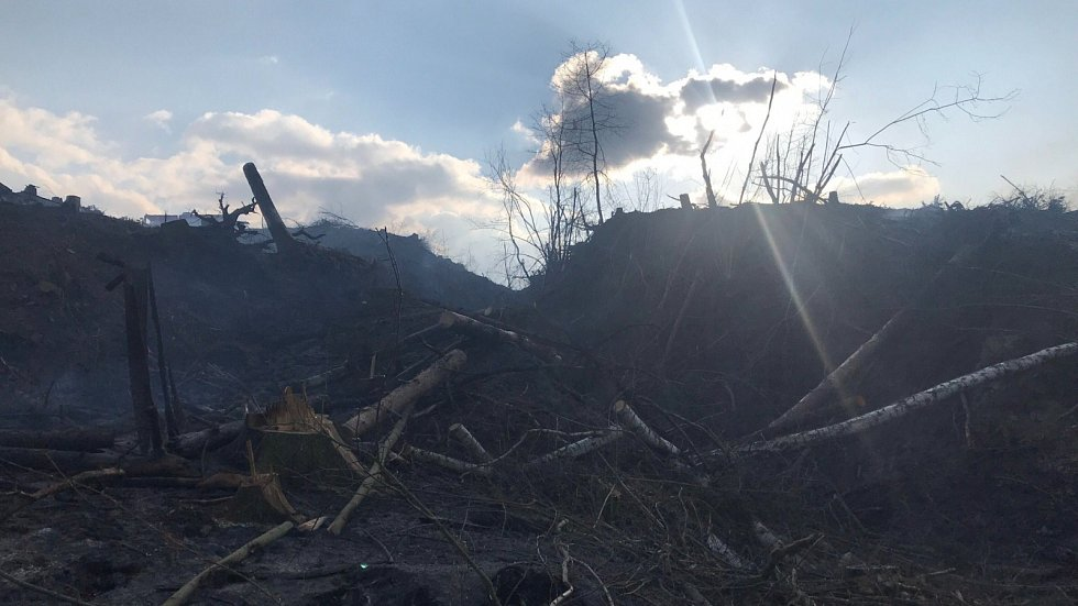 Požár lesního porostu a hrabanky u Žlutic.