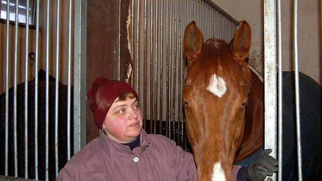 LENKA SEBEROVÁ se zabývá na karlovarském závodišti ve Dvorech hipoterapií. V této formě rehabilitace jí pomáhají skvěle vycvičení koně.