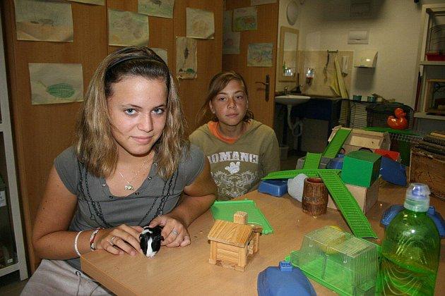 Přírodovědný tábor Městského domu dětí a mládeže Ostrov