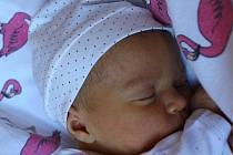 Apolena Gutvirthová z Kolové se narodila 18. března.