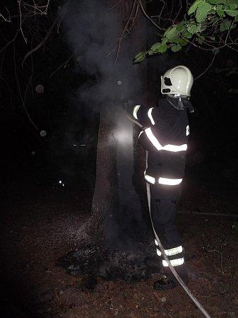 Požár stromu dal hasičům zabrat