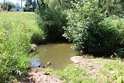 Lomnický potok, který je hlavním přítokem významné vodárenské nádrže Stanovice, je skoro bez vody.