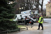 Vánoční strom města Karlovy Vary bude stát před Hlavní poštou.