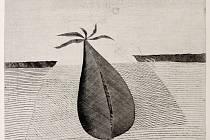 DOUTNÁNÍ PODZIMU je grafické dílo Jiřího Johna, které vytvořil v roce 1967. Podle tohoto listu je pojmenovaná celá výstava. Jiří John zde použil techniku takzvané suché jehly.
