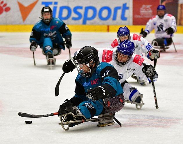 Dvě výhry během víkendu slavili vdomácím prostředí para hokejisté SKV Sharks Karlovy Vary, kteří zdolali Havířov iZlín.