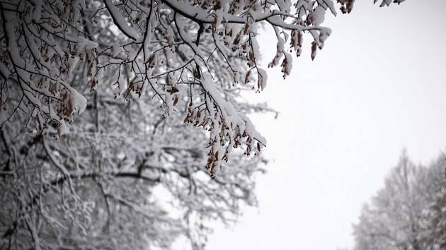 Do zimy je sice ještě hodně daleko, ale v Karlovarském kraji už přituhlo.