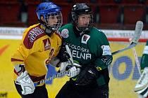 Tuhnickou KV Arenu o víkendu ovládl mládežnický turnaj mladšího dorostu.