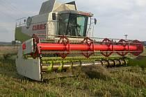 V Karlovarském kraji se už sklízejí obiloviny a řepka.