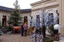 Slavnostně nazdobený Vánoční dům v Karlových Varech - Doubí