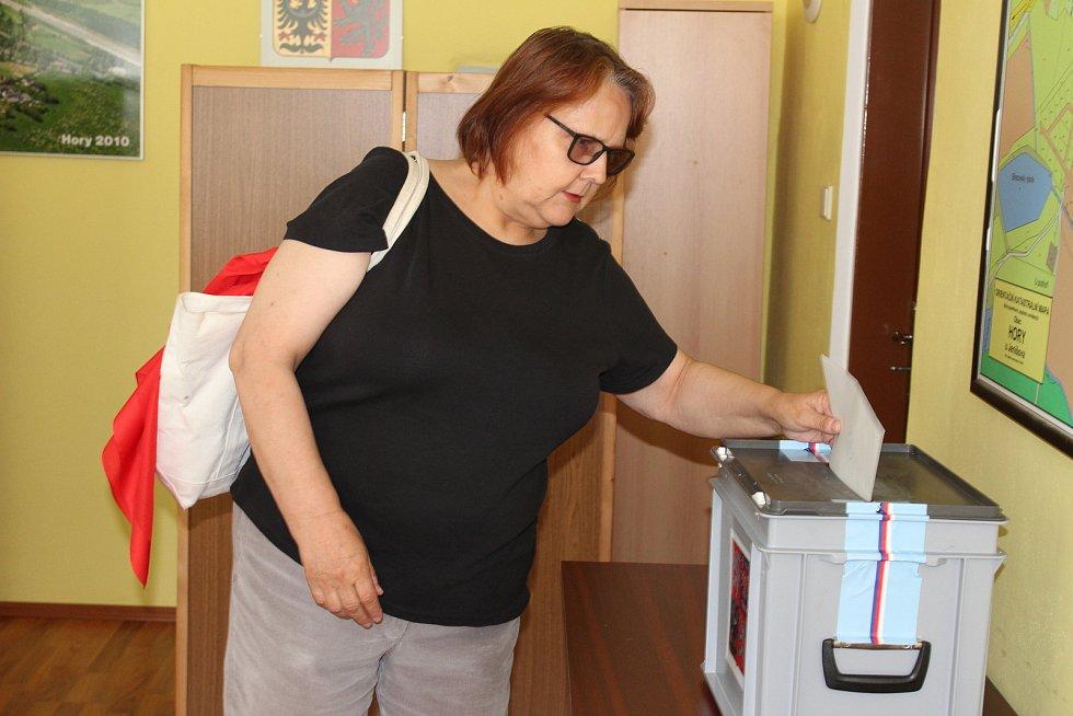 Lidé v Horách hlasovali v referendu o halách pro internetový obchod.