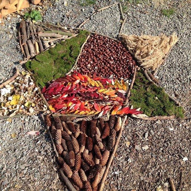 Lesní mateřská školka skalka podzimní mandala.