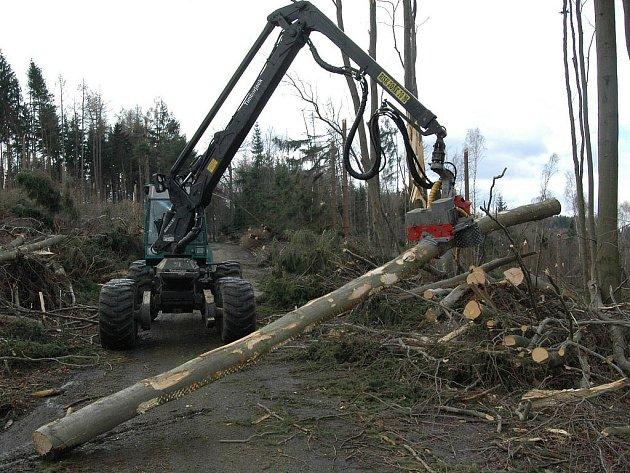 TO BYLA SILNICE ZE ŠEMNICE Jen sedm ninut řádila vichřice u silnice ze Šemnice na Andělskou Horu a i tak tu na malé ploše poničila 50 tisíc kubíků dřeva. Lesníci nikdy nic takového neviděli.