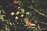 Hasiči při nočních zásazích po řádění bouřky v Karlovarském kraji.