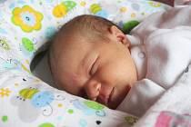 Lilly Vachová z Ostrova se narodila.