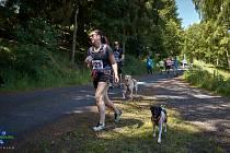 Kostelecké kopečky  napíšou v neděli 14. června již svůj pátý běžecký díl.