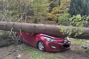 Ze zásahu hasičů. Vítr ve čtvrtek lámal stromy, ničil střechy...
