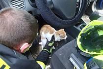 Záchrana kočky z osobního auta.