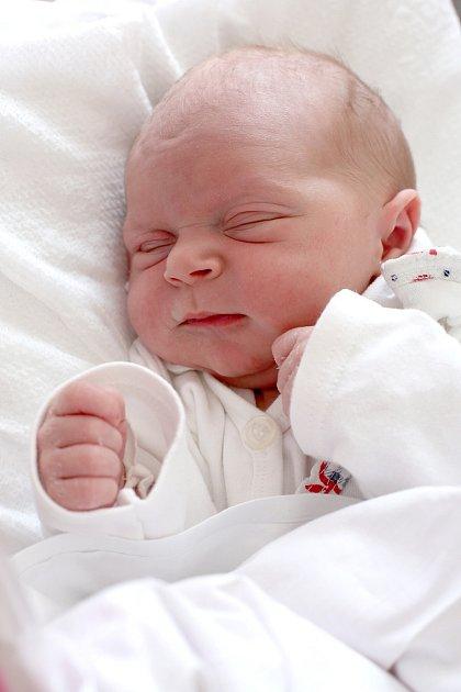 Nellinka Janátová z Toužimi se narodila 9. 4. 2015