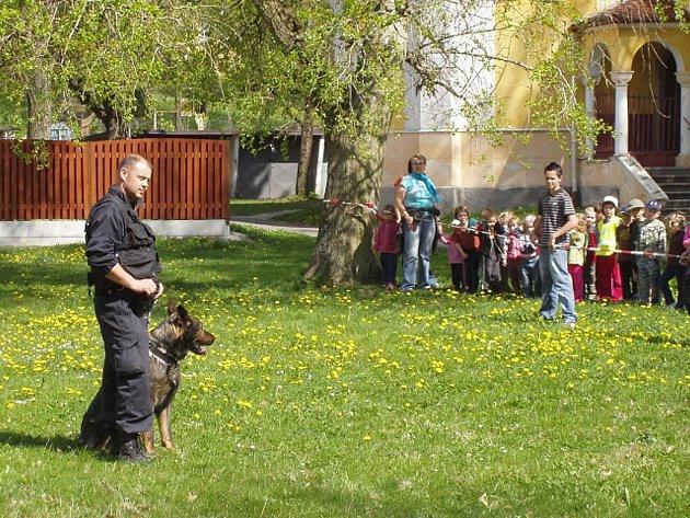 Psovod v akci. Děti se mohly mimo jiné seznámit s prací policejních kynologů.