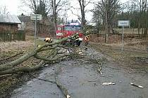 Hasiči v Karlovarském kraji zasahují u popadaných stromů.