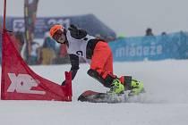 Snowboardisté měli na programu paralelní obří slalom. Ve všech čtyřech kategoriích si velmi dobře vedl Moravskoslezský kraj, který získal celkem pět medailových umístění. V kategorii mladších dívek zazářil kraj Ústecký. Foto: Radek Miča/Czech Olympic