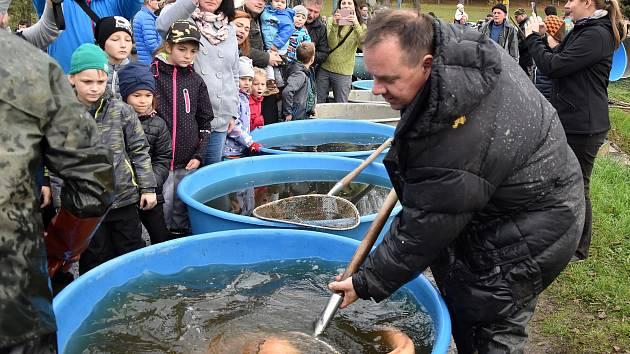 Výlovy rybníka v Nové Roli na Karlovarsku.