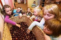 Podzim vždy skýtá řadu možností, jak podpořit dětskou kreativitu. Plánované výlety krajinou lze doplnit například i sběrem kaštanů a listí pro výrobu dekorací a zvířátek.