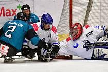 Pouhá dvě kola odehráli parahokejisté SKV Sharks Karlovy Vary v novém ročníku České para hokejové ligy.