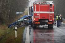 Tragická dopravní nehoda se stala v úterý 16. listopadu na silnici č. I/20 nedaleko od Toužimi, kde se srazilo osobní auto s dodávkou.