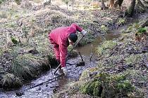 I o potok se někdo musí starat. Ochranáři přírody vyčistili Bečovský potok, kde nyní žijí ohrožení živočichové.