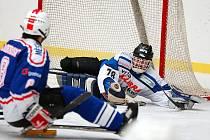 V závěrečném kole základní části sledgehokejové ligy se úřadující mistr SKV Sharks (v bílém) na povinnou výhru nad kolínskými Draky (v modrém) řádně nadřel. Nakonec Karlovarští zvítězili 7:4.