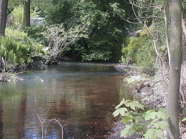 Komfort na přírodním koupališti na řece Střele není sice ideální, ale voda je tam čistá. Rekonstrukce musí zatím počkat.