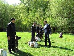 Krajská soutěž policejních psovodů dala zabrat nejen policistům, ale i jejich chlupatým parťákům.