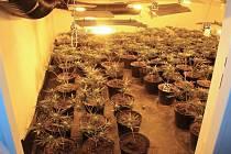 Policie na Chebsku provedla zátah na výrobce a prodejce drog.