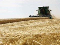 V karlovarském kraji už začala i sklizeň pšenice.