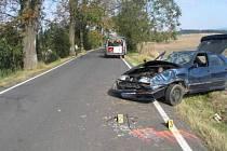 Propadlou technickou i emise mel Renault, s nímž na Chebsku havaroval sedmadvacetiletý muž, který ovšem neměl za volantem co dělat.
