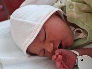 VÍŤA SILOVSKÝ z Obilné se narodil 4.1.2017