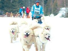 Jáchymovský biatlonový areál Eduard tradičně patřil o víkendu psím spřežením