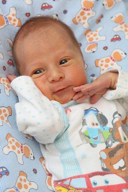 Jindřich Plec z Karlových Varů se narodil 20. 11. 2013