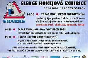 Sledge hokejová exhibice 2014