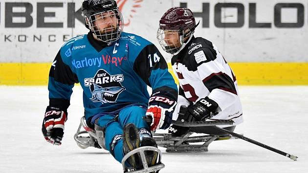 Po dvou letech se navrátili do KV Arény para hokejisté SKV Sharks Karlovy Vary. A návrat to byl vítězný. V šestém kole České para hokejové ligy Sharks pokořili v lázeňském městě i napodruhé v základní části pražskou Spartu 2:1.