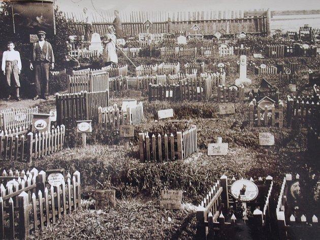PSÍ HŘBITOV. Takto kdysi vypadal dávno zapomenutý psí hřbitov v Otovicích. I tato obec, která je v současnosti samostatná, byla kdysi součástí velkých Karlových Varů.