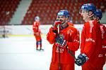 Česká hokejová reprezentace při tréninku v Karlových Varech